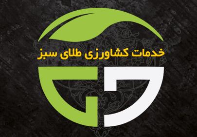 Kimia pistachio company, کرمان