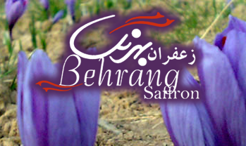 Behrang saffran, مشهد