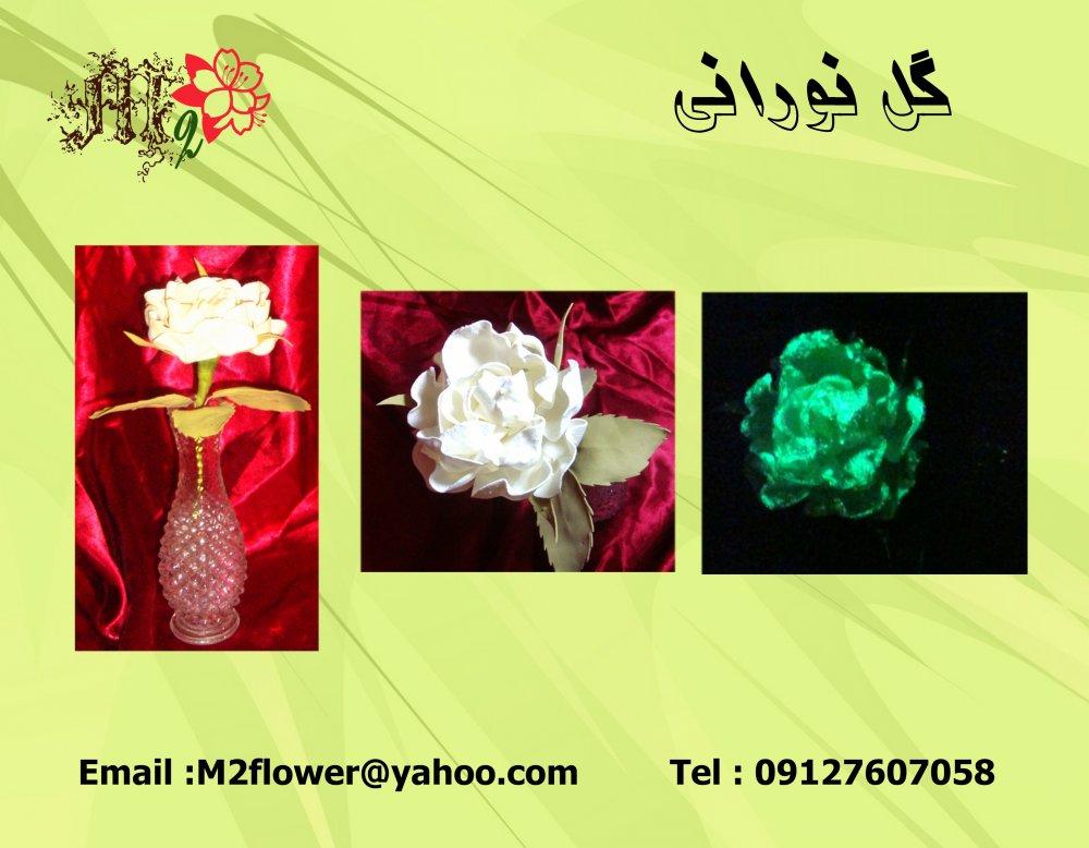 سفارش گل نورانی