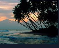 تور سریلانکا ( 3 شب کلمبو 2 شب کندی 2 شب بنتوتا )