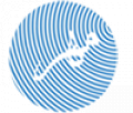 طراحی پرتال (پورتال)، پرتال دولتی (سازمانی)، پرتال اطلاع رسانی دولتی و خصوصی
